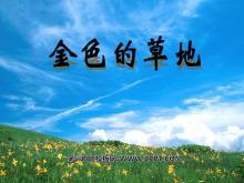 《金色的草地》PPT课件4