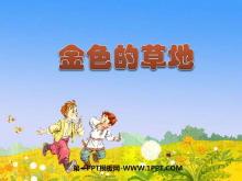 《金色的草地》PPT课件6