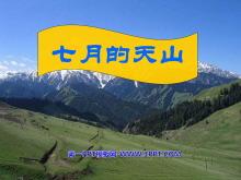 《七月的天山》PPT课件8
