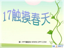 《触摸春天》PPT课件5