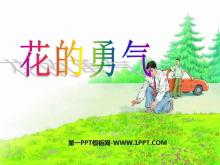 《花的勇气》PPT课件5
