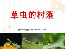 《草虫的村落》PPT课件下载7