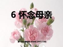 《怀念母亲》PPT课件下载5
