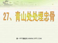 《青山处处埋忠骨》PPT课件7