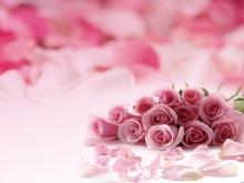 粉色浪漫玫瑰花PPT背景�D片