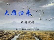 《大雁归来》PPT课件8