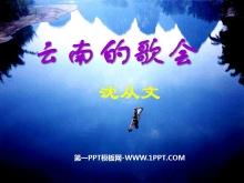 《云南的歌会》PPT课件8