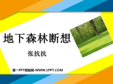 《地下森林断想》PPT课件4