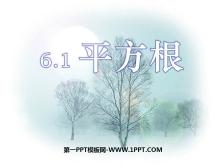 《平方根》实数PPT课件6
