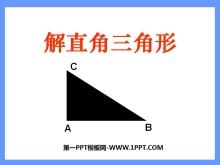 《解直角三角形》锐角三角函数PPT课件3