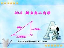 《解直角三角形》锐角三角函数PPT课件4