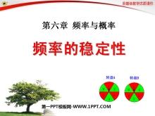 《频率的稳定性》频率与概率PPT课件3