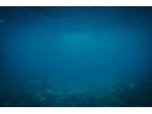 蓝色海底世界简洁PPT背景图片