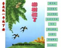 《柳树醒了》PPT课件8