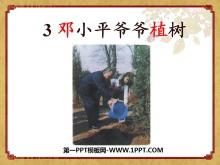 《邓小平爷爷植树》PPT课件6