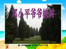 《邓小平爷爷植树》PPT课件8