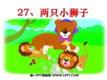 《两只小狮子》PPT课件9