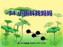 《小蝌蚪找����》PPT�n件4