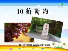 《葡萄沟》PPT课件10