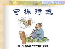 《守株待兔》PPT课件6