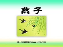 《燕子》PPT课件10