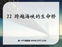 《跨越海峡的生命桥》PPT课件9