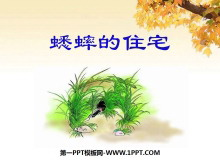 《蟋蟀的住宅》PPT课件7