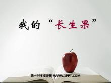 """《我的""""�L生果""""》PPT�n件8"""