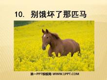 《别饿坏了那匹马》PPT课件3