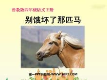 《别饿坏了那匹马》PPT课件5