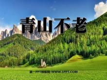 《青山不老》PPT课件6