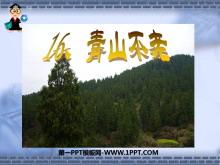 《青山不老》PPT课件7