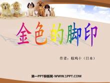 《金色的脚印》PPT课件7
