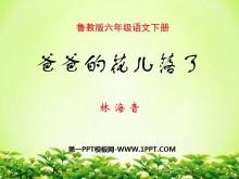 《爸爸的花儿落了》PPT课件7