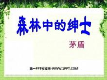 《森林中的绅士》PPT课件2