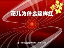 《花儿为什么这样红》PPT课件8