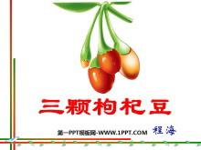 《三颗枸杞豆》PPT课件4