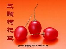 《三颗枸杞豆》PPT课件5