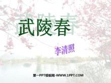 《武陵春》PPT课件2