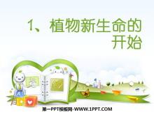 《植物新生命的开始》植物的生长变化PPT课件2
