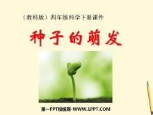 《种子的萌发》新的生命PPT课件