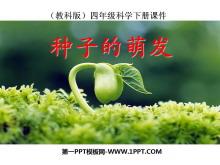 《种子的萌发》新的生命PPT课件2