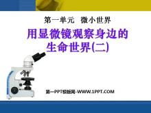 《用显微镜观察身边的生命世界(二)》微小世界PPT课件