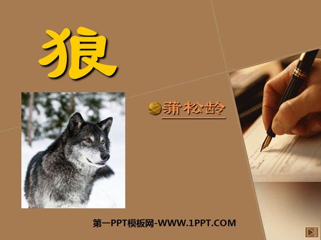 《狼》PPT课件8