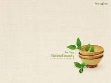 花盆内的绿色植物PPT背景图片