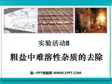 《粗盐中难溶性杂质的去除》盐化肥PPT课件3