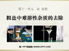 《粗盐中难溶性杂质的去除》盐化肥PPT课件4