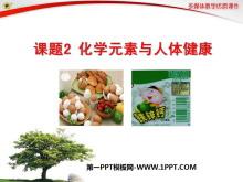 《化学元素与人体健康》化学与生活PPT课件2