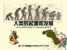 《人类的起源和发展》人的由来PPT课件2
