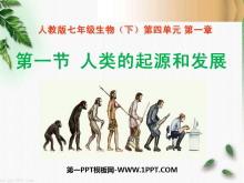 《人类的起源和发展》人的由来PPT课件4